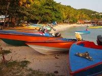 Les barques colorées des pêcheurs