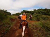 Tom peut monter un vrai cheval cette fois ! (cf article de la Dominique)