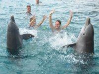 Tom et Iris jouent avec les dauphins du Dolphin Academy