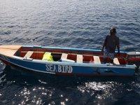 Le comité d'accueil des « Boats-Boys »