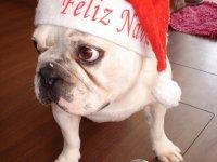 C'est Nitro qui a bien voulu jouer le rôle du père Noël cette année