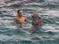 Tom ressort de l'eau avec le dauphin...