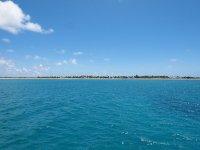 La belle Barbuda