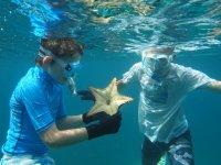 Martinique, Grande Anse d'Arlet, Tom et Thomas observent une étoile coussin