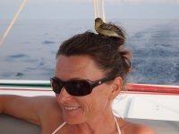 Ca faisait 3 fois que cet oiseau essayait d'atterrir sur ma tête...