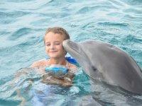 Un bisou de dauphin