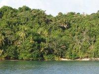 Isla Linton
